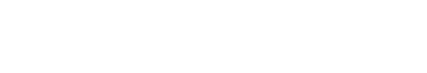 CORPORATION OWL HOLDINGS RECRUIT